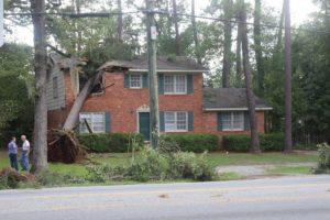 Tree Felled on a House